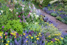 color garden. Romantic Victorian Style Cottage Flower Gardening With Soft Pastel Colors, Stone Walkway, Pinks, Color Garden
