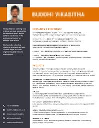 Create A Professional Cv For You Using Canva