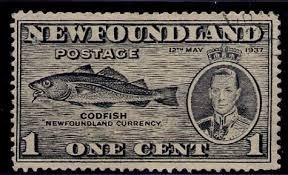 Risultati immagini per COD FISHING IN NEWFOUNDLAND