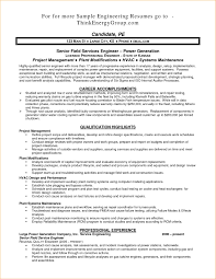 Power Resume Sample Free Resume Example And Writing Download