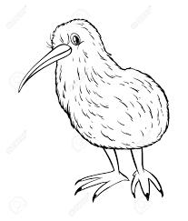 キウイ鳥の図の動物の概要