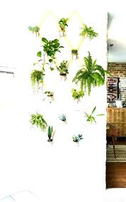 wall mounted planters s ed nz plant holders uk outdoor diy
