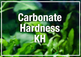 Api Gh And Kh Conversion Chart Beginners Guide To Aquarium Carbonate Hardness Kh