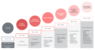 Information Technology Career Path Flow Chart Why You Should Choose The Project Manager Career Path