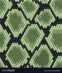 Snake Skin Pattern Best Green Seamless Snake Skin Pattern Royalty Free Vector Image