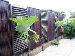 bamboo backyard fence outdoor bamboo screen screens 9 best images on  balcony and backyard fences pool