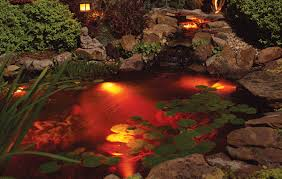 koi pond lighting ideas. Click Here To See These Lights In Use Koi Pond Lighting Ideas