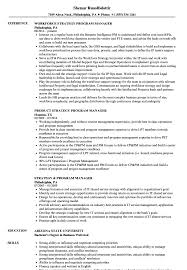 Program Manager Resume Examples Strategy Program Manager Resume Samples Velvet Jobs