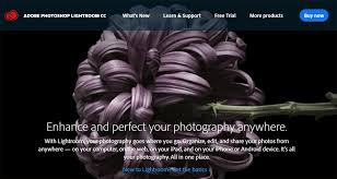 Best Software For Creative 2017 Cc Adobe 5 Graphic Designs Web And HdTxqRRt