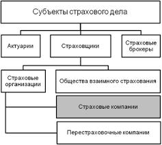 Страховая компания Википедия