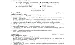 Hybrid Resume Template Hybrid Resume Template Free Doc Private Car
