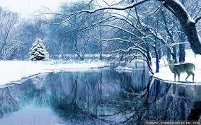 winter nature wallpaper. Exellent Wallpaper Videos Intended Winter Nature Wallpaper P