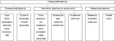 Курсовая работа Учет расчетов с поставщиками и подрядчиками Пути  ООО Рапира имеет организационную структуру установленную внутренними распорядительным документами Общества рис 4