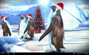Christmas Edition: Penguins 3D for ...
