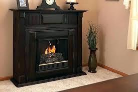 propane wall fireplace propane heater propane wall fireplace wall mounted propane heater propane wall fireplace direct