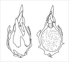 Tranh Tô Màu Hoa Quả ❤️1001 Hình Trái Cây Tô Màu Cho Bé