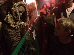 matthew attended 13th floor fast p denver s largest haunted house tickets only good for