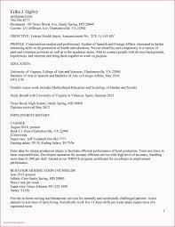 Creative Resume Maker Online Free L Templates Google Docs Best