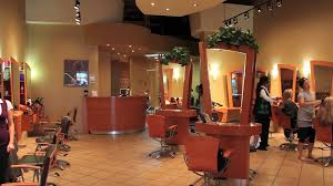 Hair Design Concepts Hair Fitness And Salon Concepts Spa Franchise Video