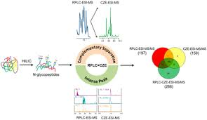 Rplc Charts Site Specific Glycan Heterogeneity Characterization By