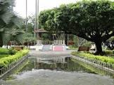imagem de Estrela Dalva Minas Gerais n-3
