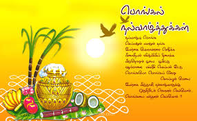 pongal happy greetings in tamil for kids happy pongal wishes pongal happy greetings