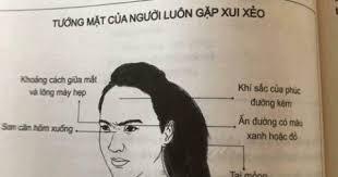 Một số thông tin về nhân tướng học của phụ nữ. Nếu gương mặt của người