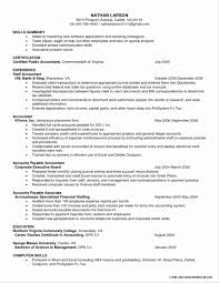 100 Free Resume Template Free Resume Writing Template Or 100 Free Resume Templates Download