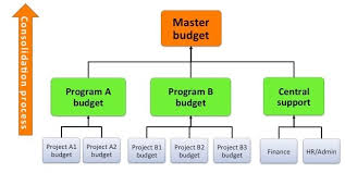 Budget Projects Consolidated Program Budget Fmd Pro Starter