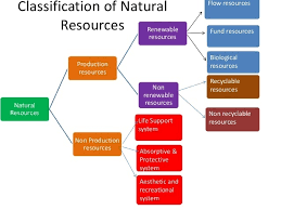 Flow Chart Of Classification Of Resources Draw A Chart Showing The Classification Of Resources