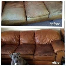 conditioning leather couches leather conditioner for couch leather is always in contact with our skin we