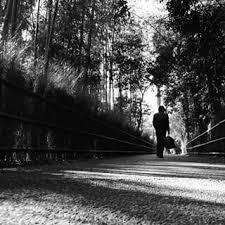 田村幸士さんのインスタグラム写真 田村幸士instagram嵯峨 嵐山