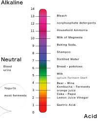 Ph Level Chart For Urine Ph Test 2 9 Strips