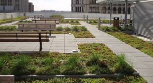 cleveland green roof