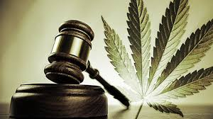 research paper on legalizing marijuana benefits of marijuana  research paper on legalizing marijuana 10 benefits of marijuana legalization