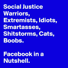 Image result for Social Justice Warrior Are Idiots