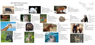 Modified Spirit Animal Chart Mbti