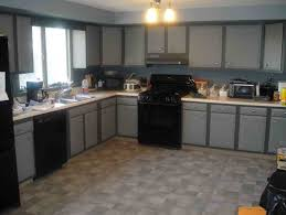 painted kitchen cabinets with black appliances. Painted Kitchen Cabinets With Black Appliances Cabinet Col On Gray Dark Floor Grey Wall Units O