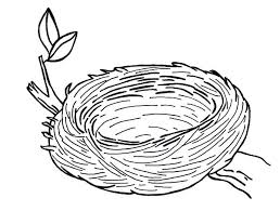 Small Picture Warm and Safe Bird Nest Coloring Pages Best Place to Color