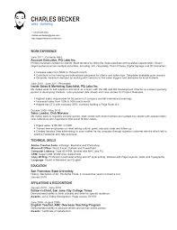 B2b Sales Resumes B2b Sales Resume