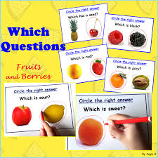 FREE Which Questions Autism Worksheets for Special Ed and Speech ...