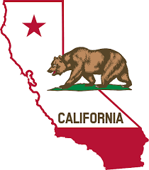 California Sees a 76 Percent Decline in Cancer Risks, Thanks to Cleaner Air  - Scientific American Blog Network