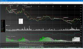 Data Visualization Net C Charts Exe Svg Html5