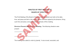 Minutes Of First Board Of Directors Meeting Business Forms