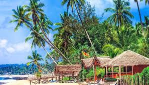Ab ins Paradies: Top 6 Strände in Sri Lanka - WeDesignTrips
