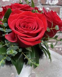 mothers day stylish red rose gift wallpaper