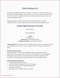 Sample Resume For Airline Customer Service Representative New Sample