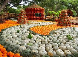 autumn at the arboretum dallas arboretum and botanical garden