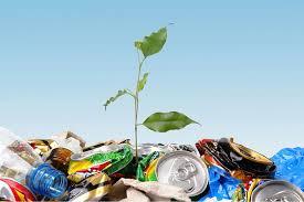 Переработка твердых бытовых отходов термическая и биотермическая  Переработка твердых бытовых отходов