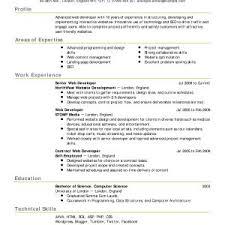 Web Developer Responsibilities Resume Elegant Senior System Analyst ...